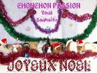 06-sandrine77-ChonchonPassion